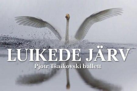 """Балет """"SWAN LAKE"""""""