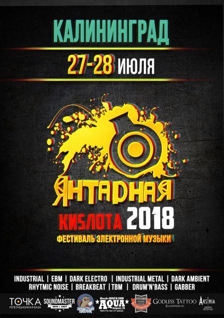 Фестиваль Янтарная киsлота 2018