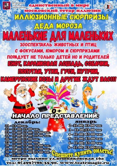 Новогодние представления. Московский театр иллюзии
