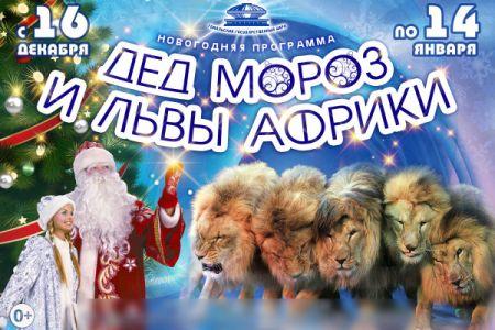 Дед Мороз и львы Африки. Гомельский цирк