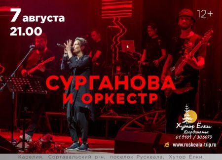 Концерт группы Сурганова и Оркестр в Карелии