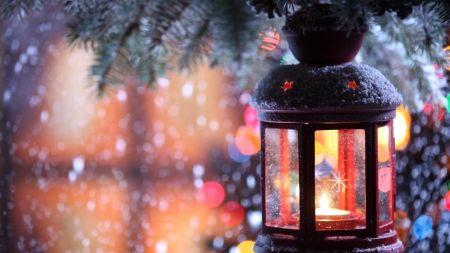 Елки 2019 в Тамбове и новогодние праздники