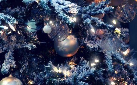 Елки 2019 в Саранске и новогодние праздники