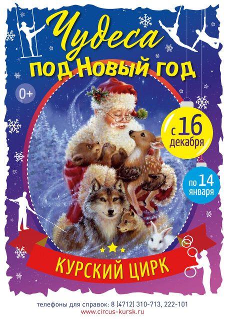 Чудеса под Новый год. Курский цирк