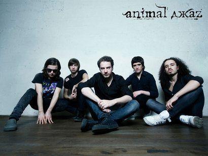 Концерт группы Animal ДжаZ в г. Калининград. 2015