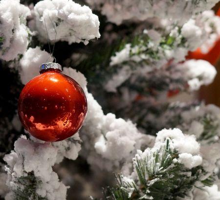Елки 2020 в Рязани и программа Нового года