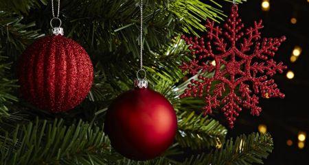 Елки 2021 в Старом Осколе и праздничные мероприятия