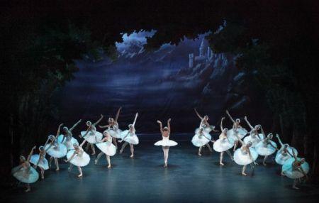 Лебединое озеро (труппа театра балета им. Чайковского). Александринский театр