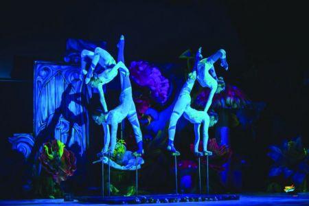 Лучшие цирки мира
