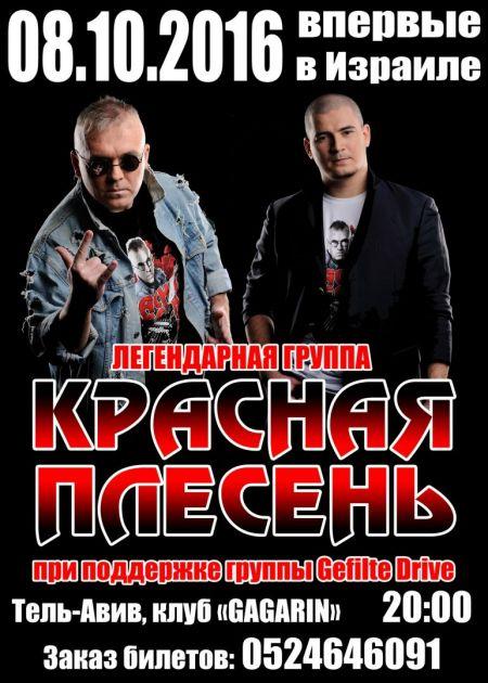 Концерт группы Красная плесень