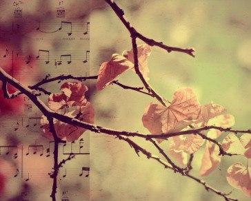 Музыка, как частица нашей жизни