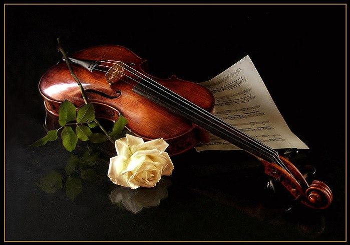 Одесская скрипичная школа. Яркие представители и этапы развития