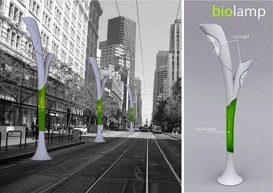 Экологический фонарь Biolamp - альтернативное уличное освещение
