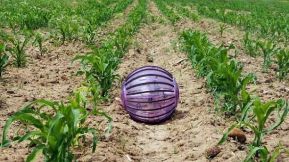 Дослідники з Політехнічного університету Мадрида розробили сферичного робота