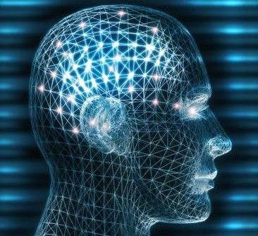 Рождение мысли в коре головного мозга: как это происходит