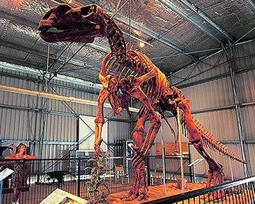 В Австралії знайшли скелет найбільшого 25-метрового динозавра