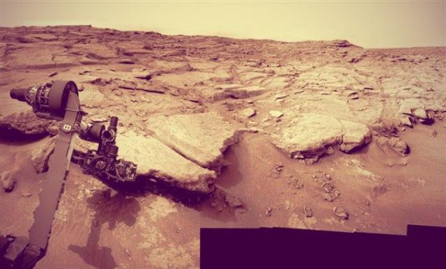 Квітка на Марсі