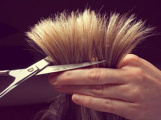 Проблема секущихся волос решена!