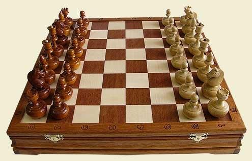 шахматный турнир ЗОО НСЖУ