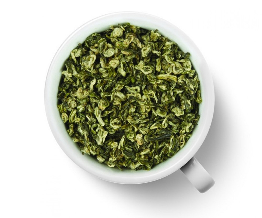 green tea from the internet The power of green tea extract comes from the catechins these are the antioxidants that keep you healthy and youthful, and fight against illness and cancer as always, consult your doctor before making any health decisions based on internet reviews.