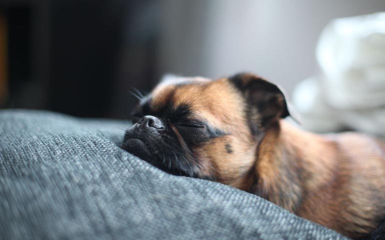 Отдых. Как отдыхать