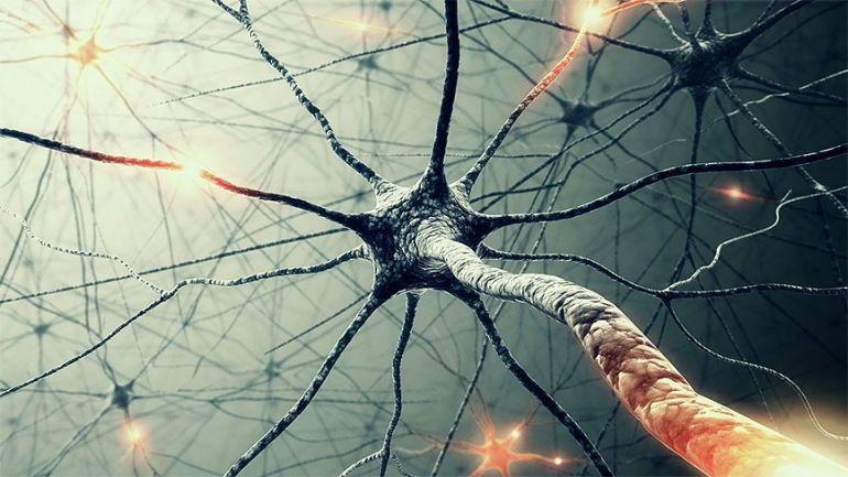 Что такое нейронная сеть