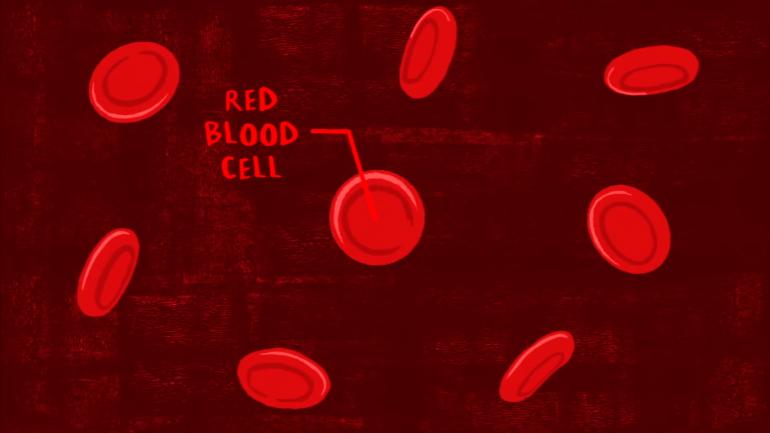 Что такое группа крови. Разбираемся вместе