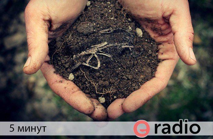 Слушать передачу 5 минут. Что в себе таит почва?