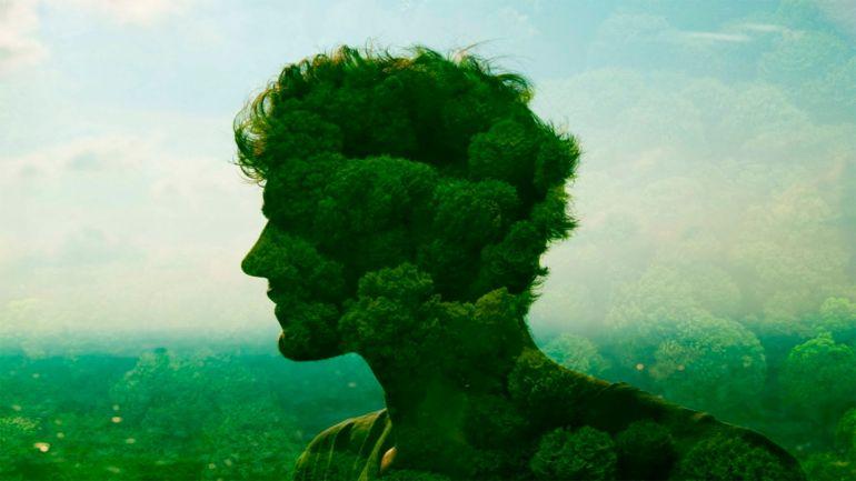 Природа и самовыражение