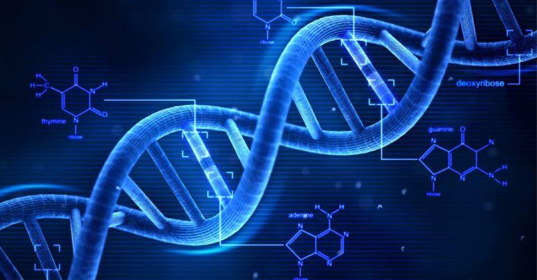 Как исправить ДНК человека. Научные статьи на портале Эксперимент