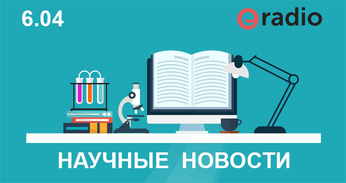 Криминальные новости волгоградской области сегодня