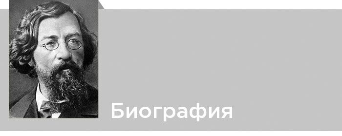 Николай Гаврилович Чернышевский. Подробная биография. Читать онлайн