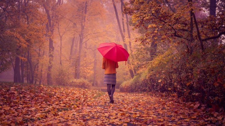 Зонт – стильный аксессуар настоящей модницы