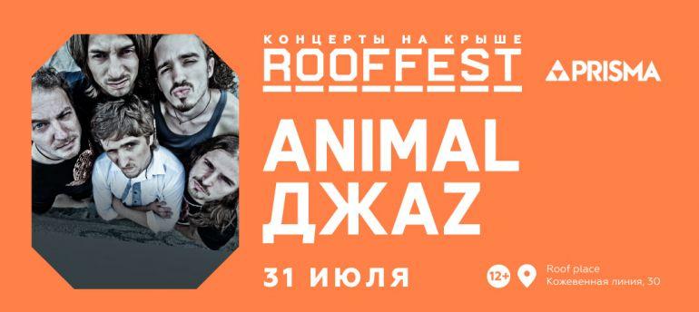 Концерт Animal ДжаZ. Фестиваль Roof Fest. Афиша Санкт-Петербург 2019