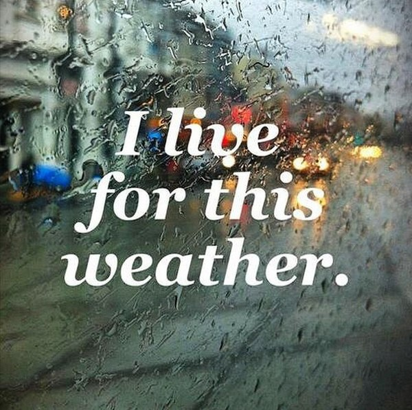 I Love Rainy Days Quotes: Что делать во время дождя