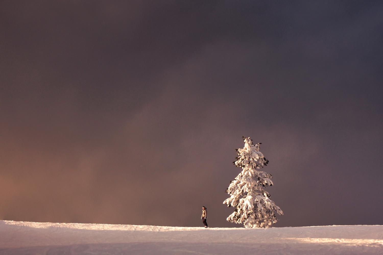 Зима — честное время года